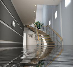 water damage south lake tahoe house